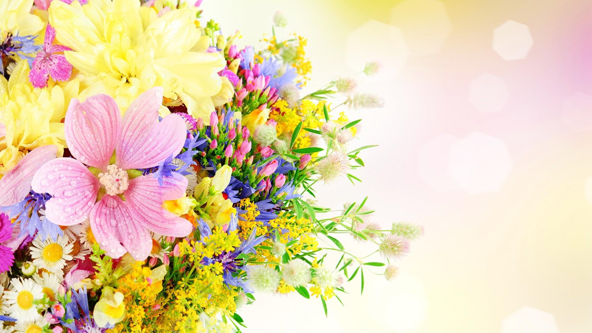 Women's Day Flower wallpaper image