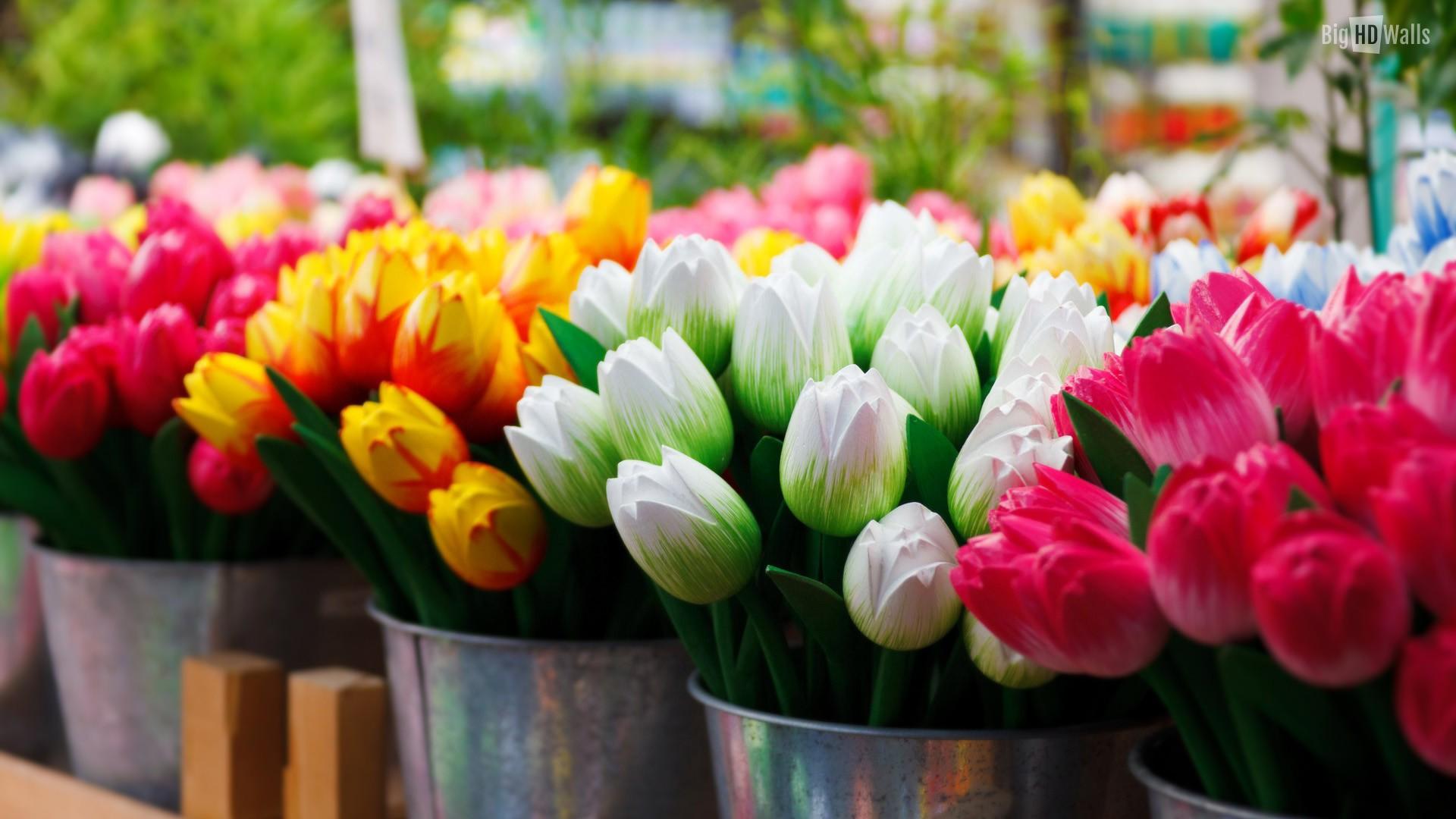 Women's Day Flower full hd image