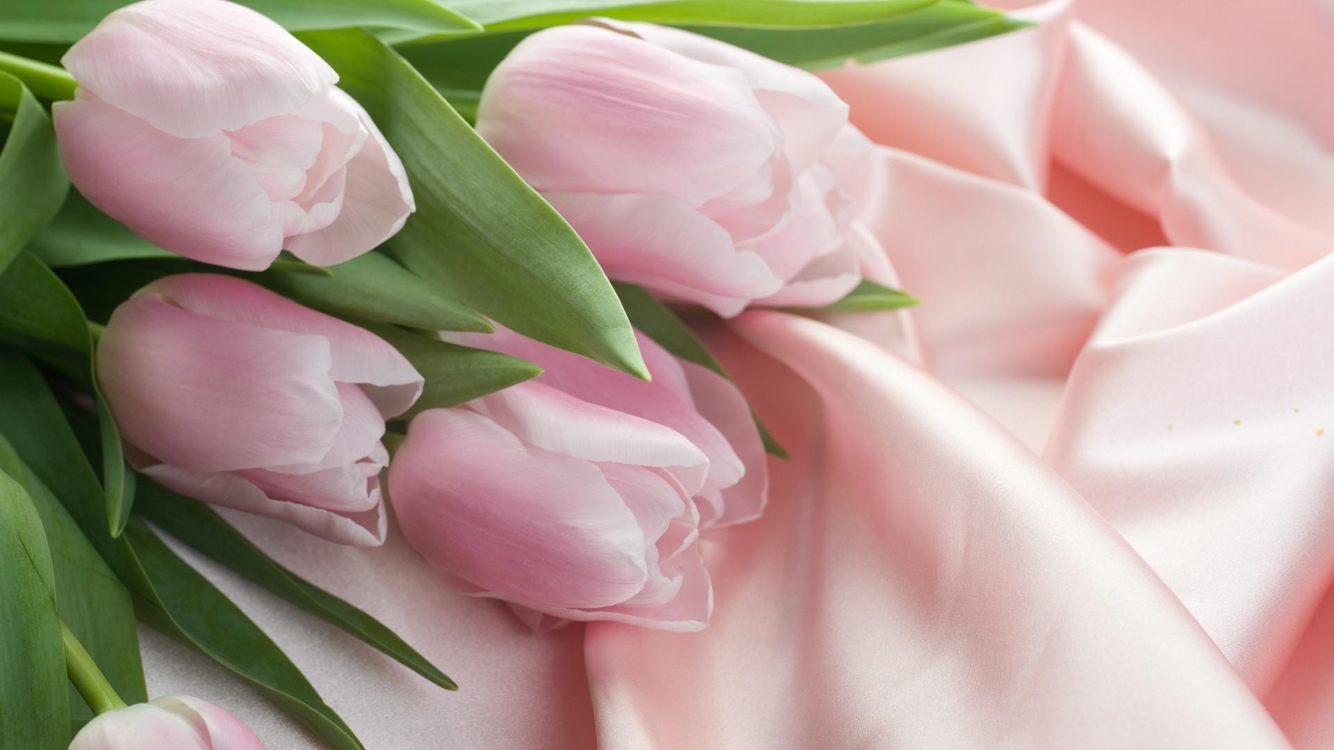 Women's Day Flower free hd wallpaper