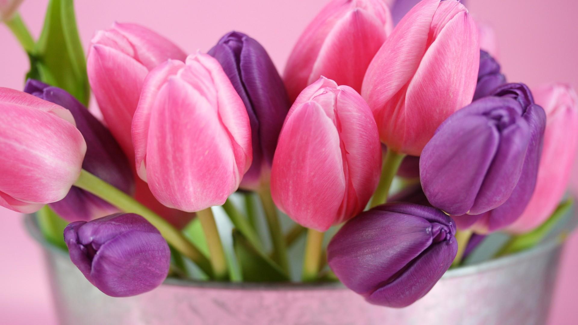 Women's Day Flower wallpaper download