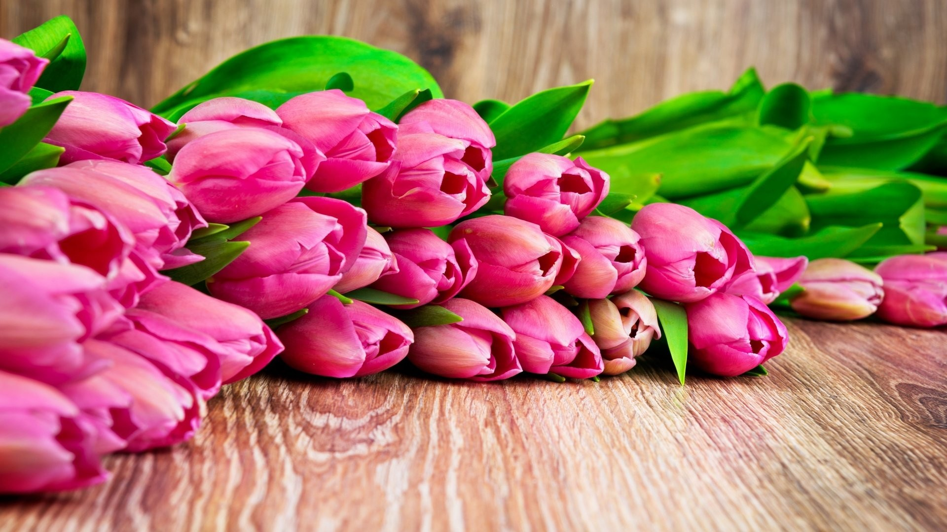 Women's Day Flower download image