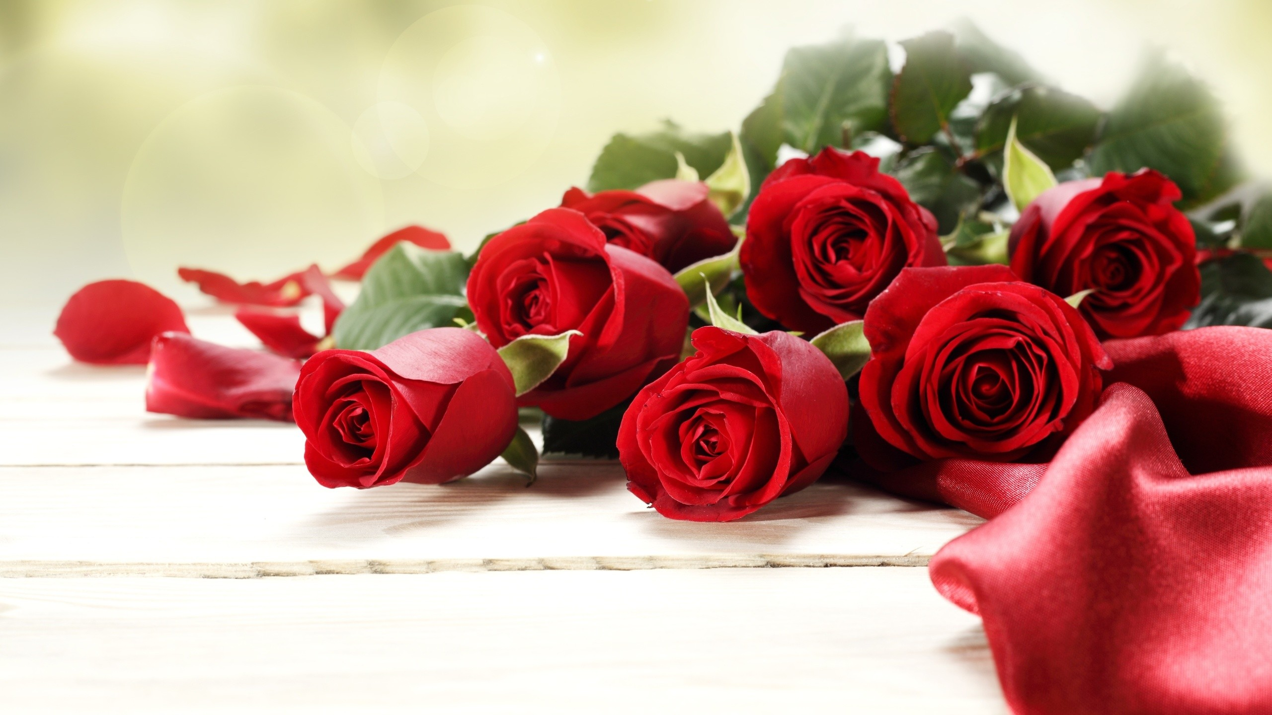 Women's Day Roses hd wallpaper