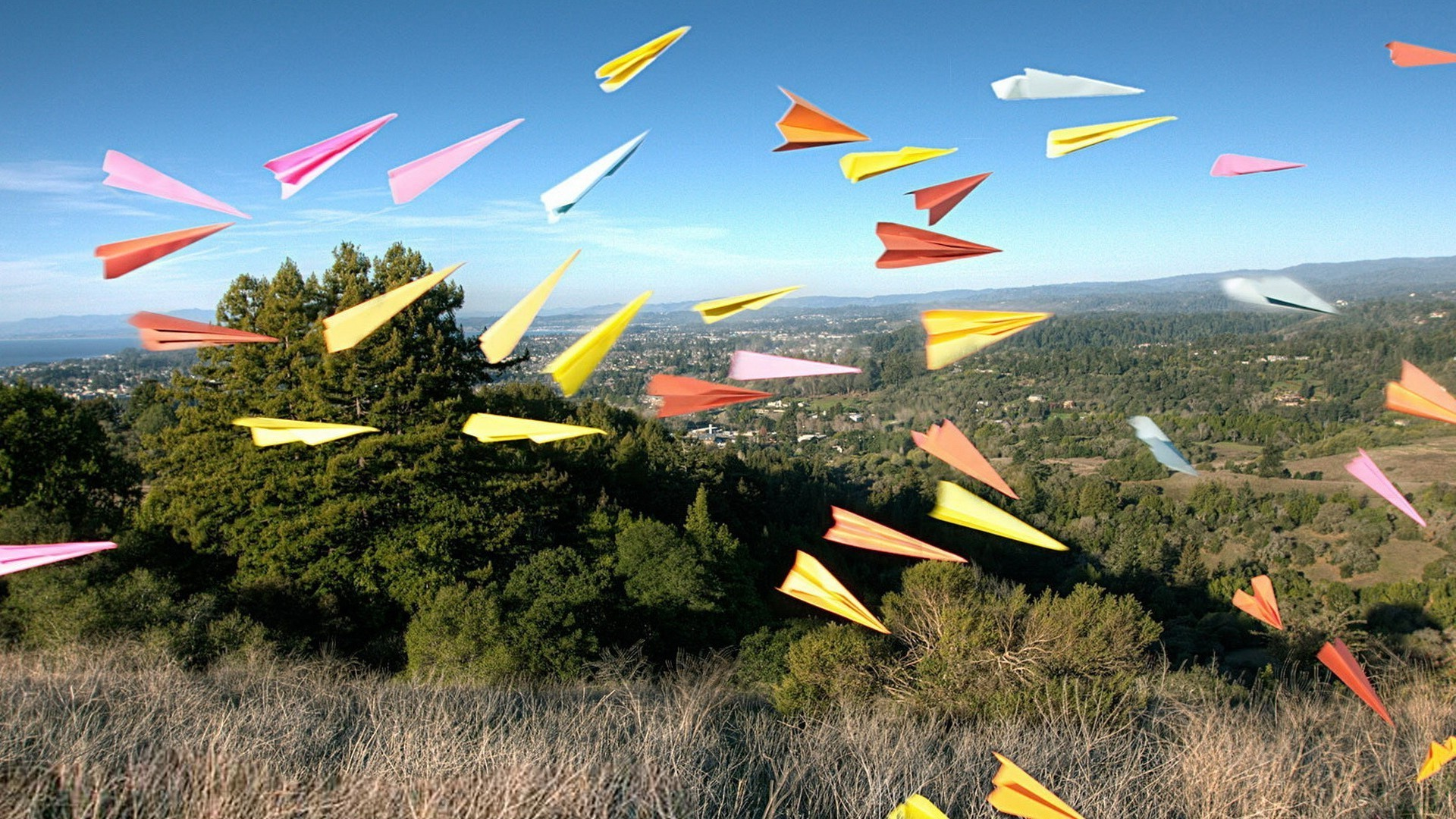 Paper Airplane picture image