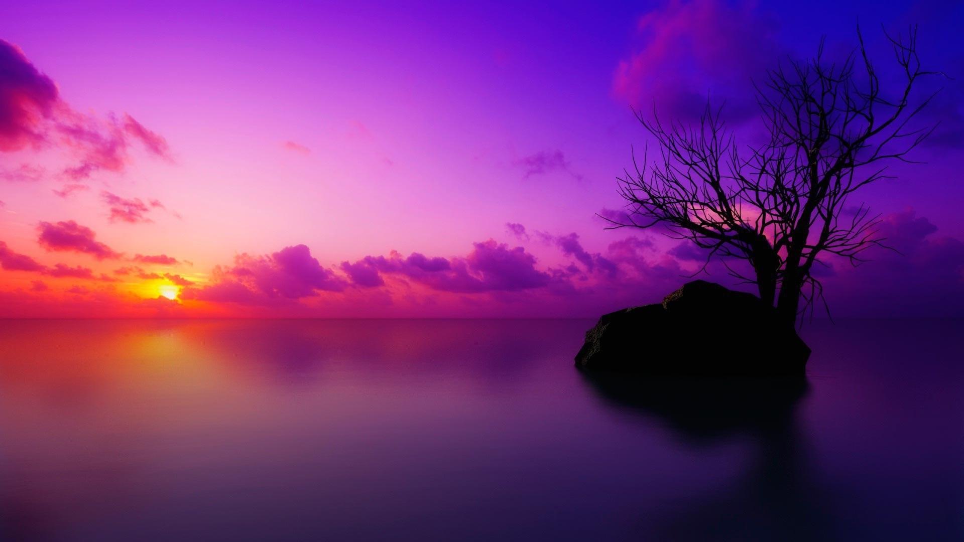 Purple Sunset Pic