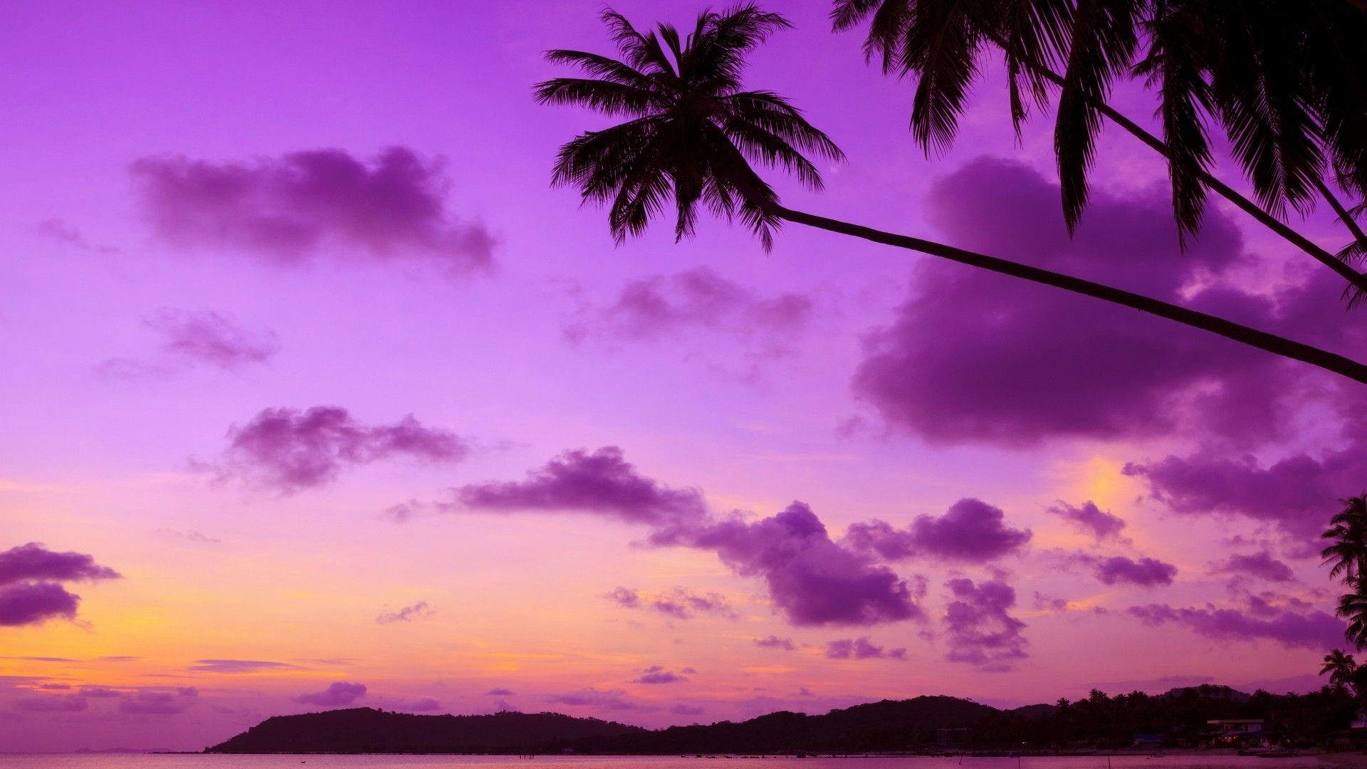 Purple Sunset HD Download