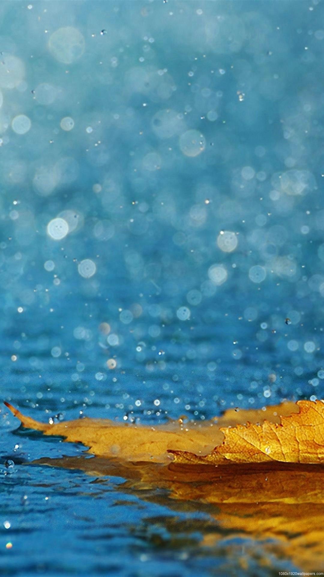 Rain iOS 10 wallpaper