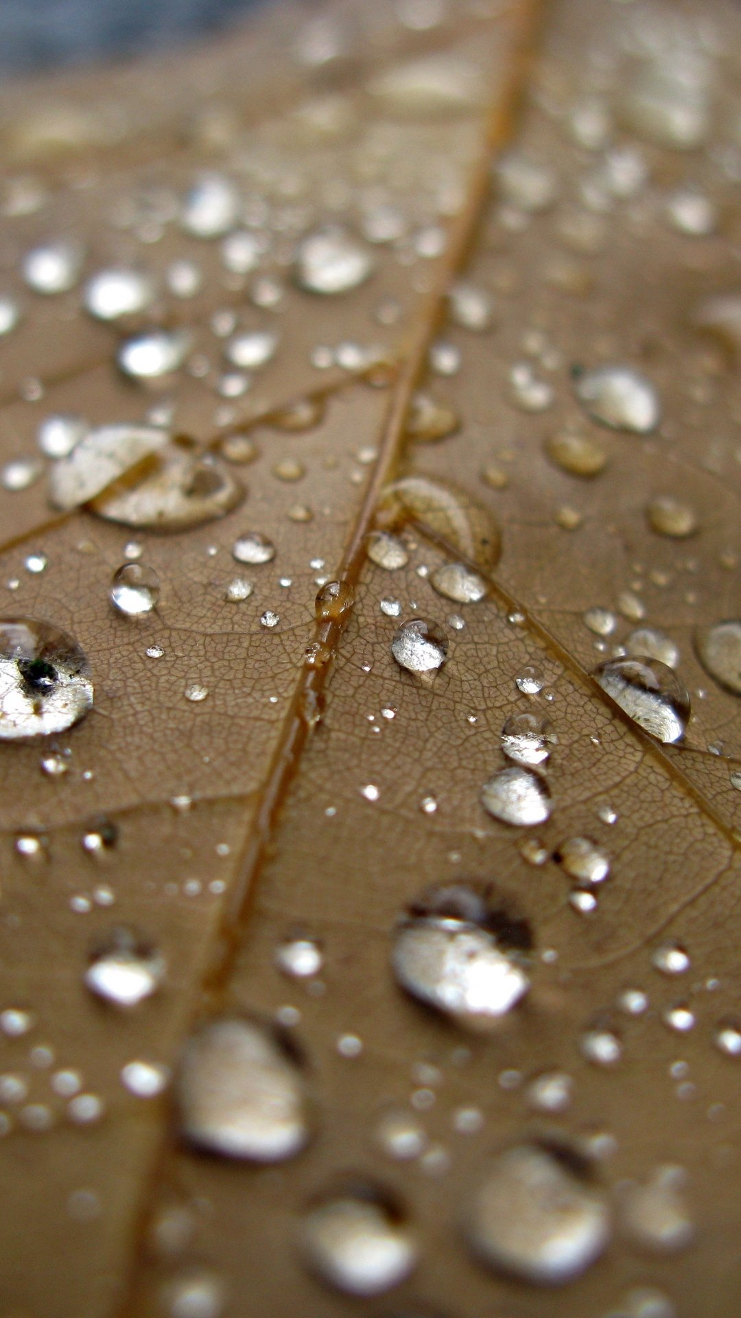 Rain Galaxy wallpaper hd