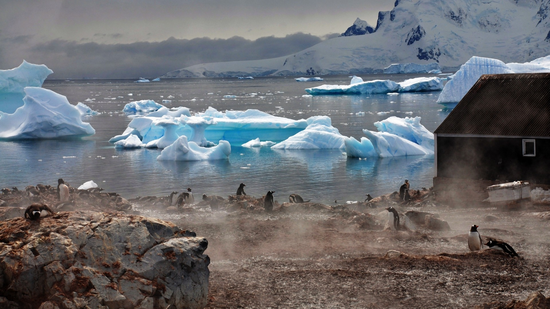 Antarctica HD Download