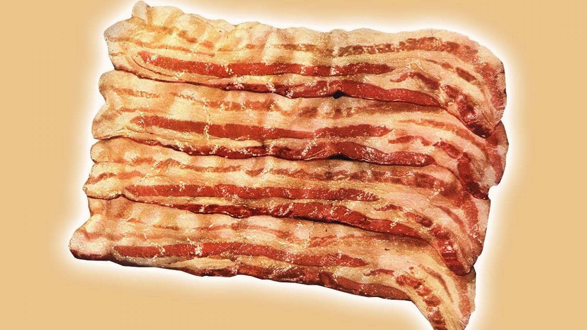 Bacon Wallpaper Download