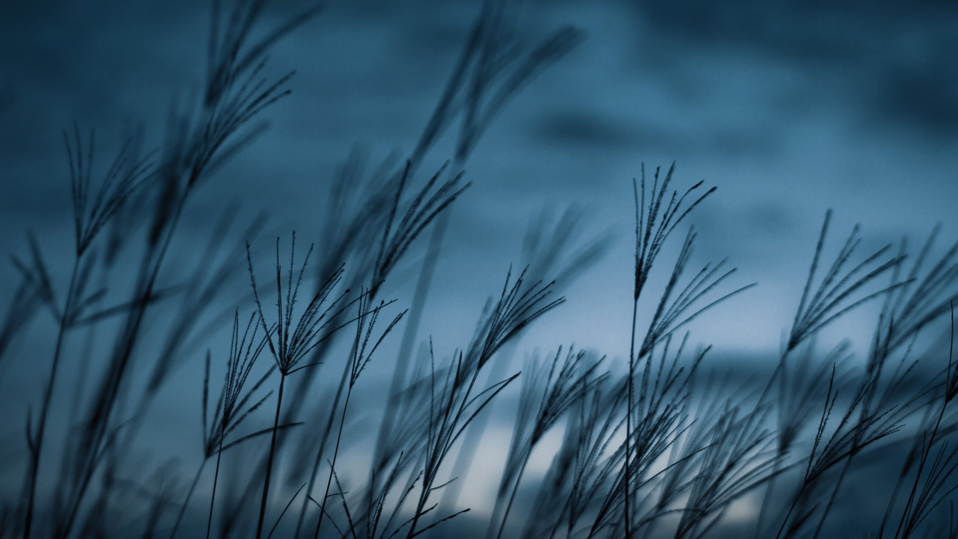 Blue Aesthetic Wallpaper Image