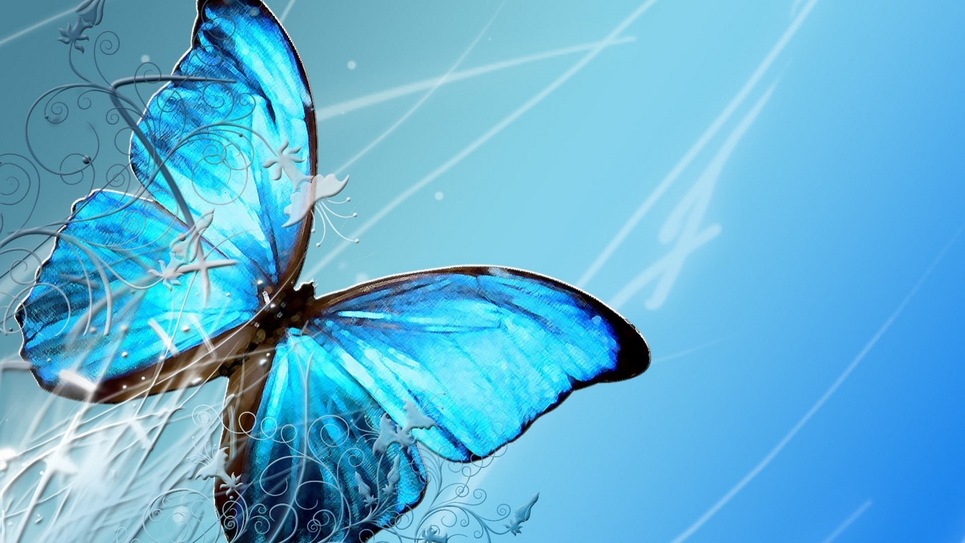 Blue Butterfly Wallpapers 19 Images Wallpaperboat