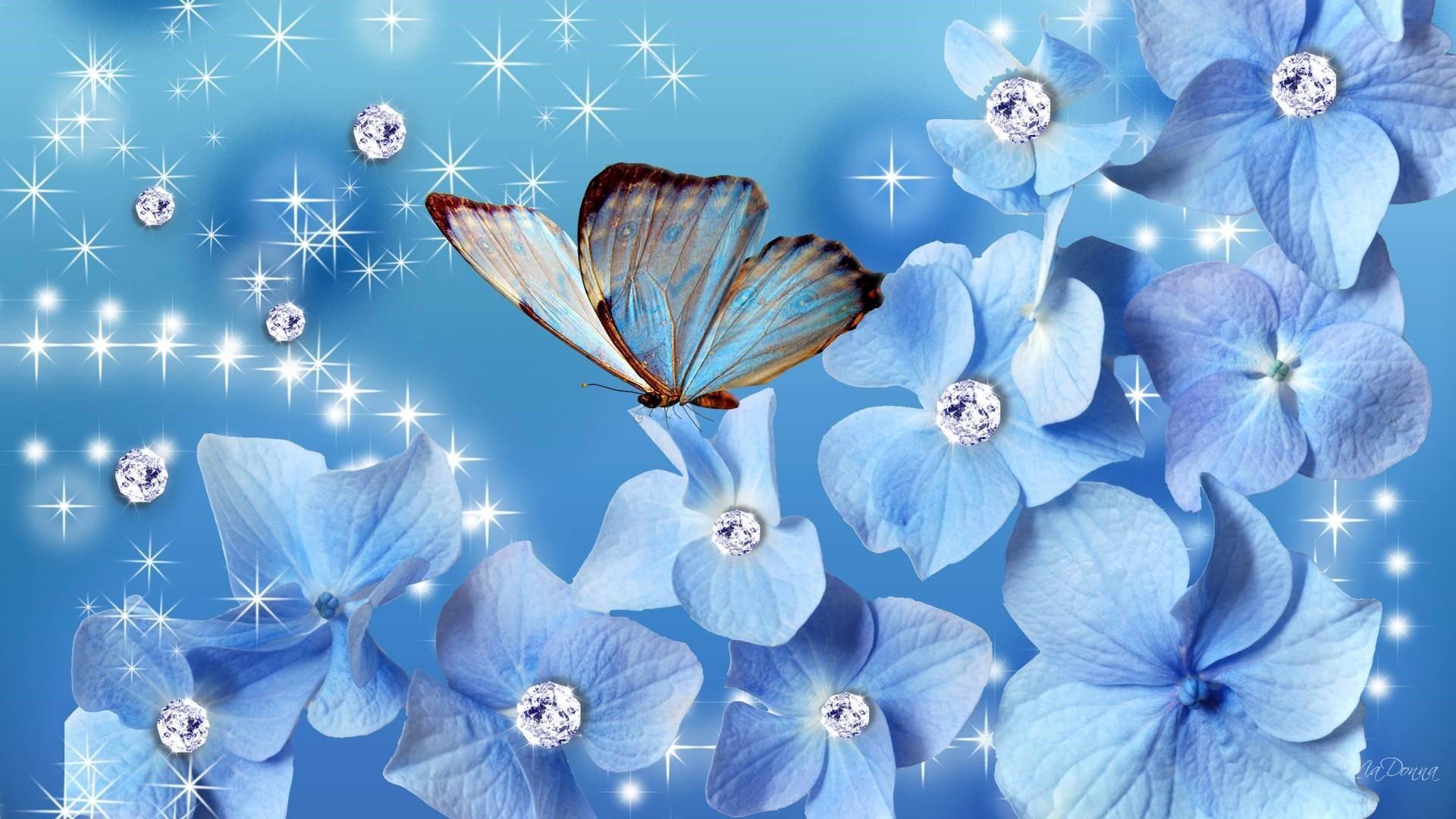 Blue Butterfly full hd 1080p wallpaper