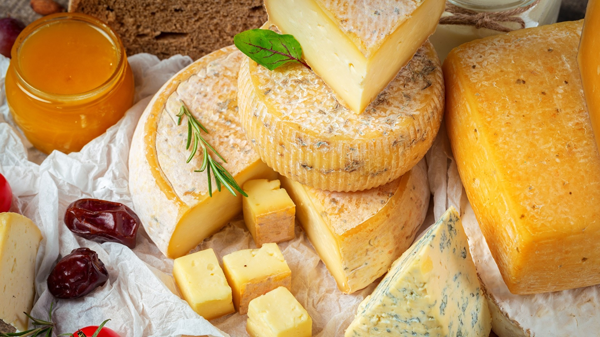 Cheese Wallpaper Free Download