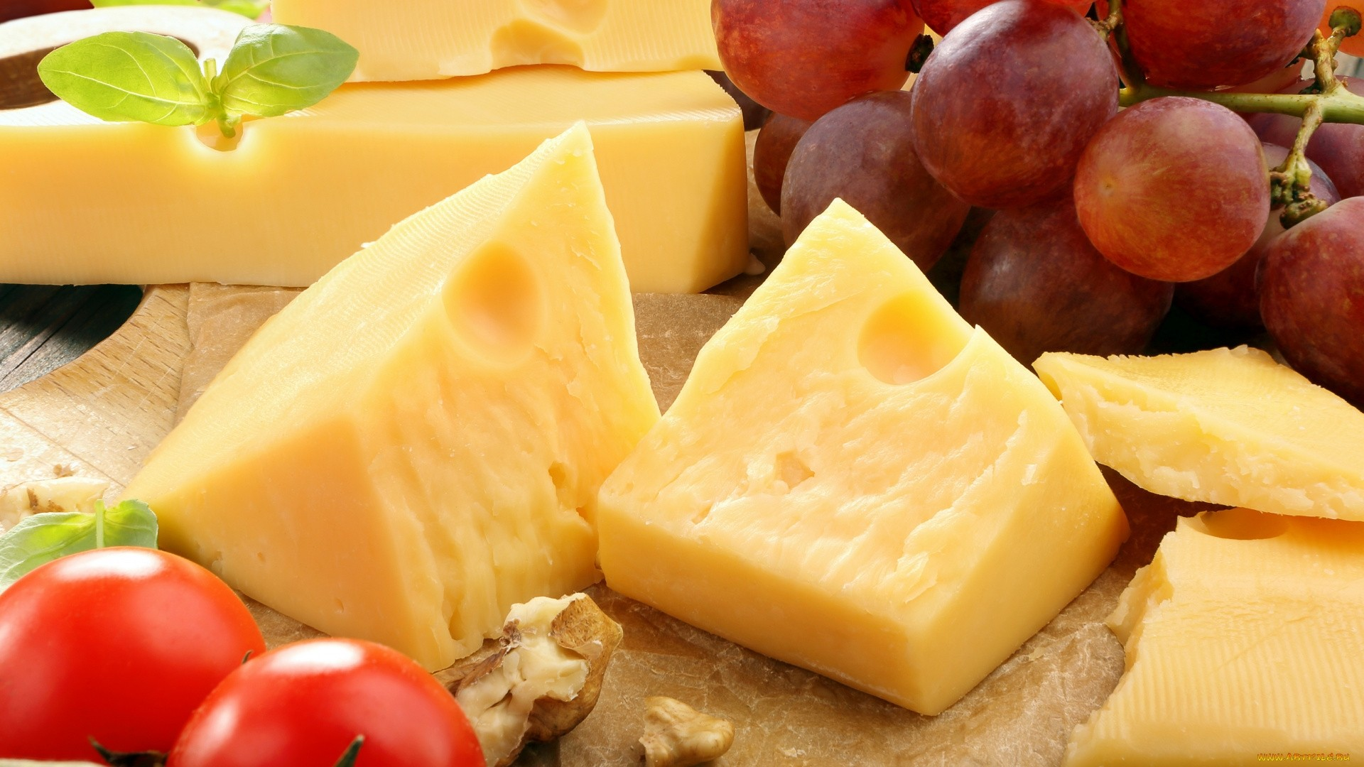 Cheese Wallpaper HD