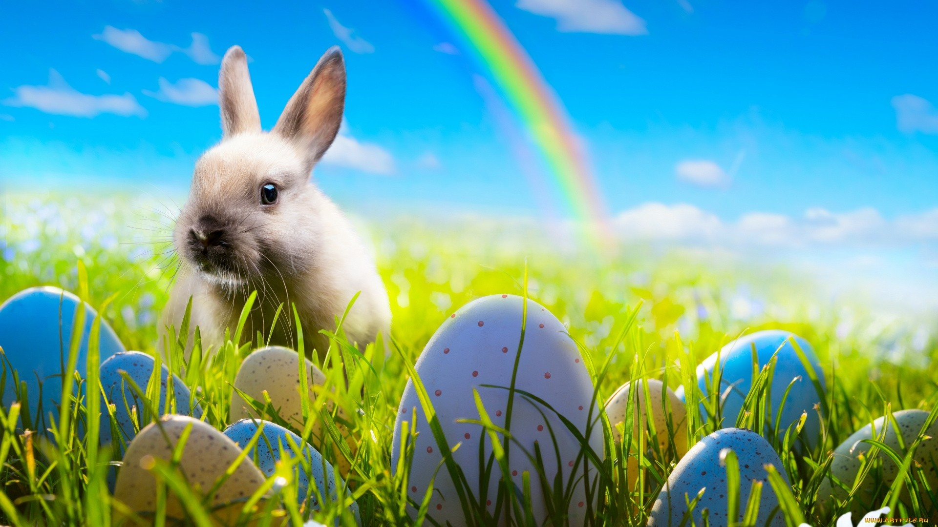 Cute Easter Wallpaper Download