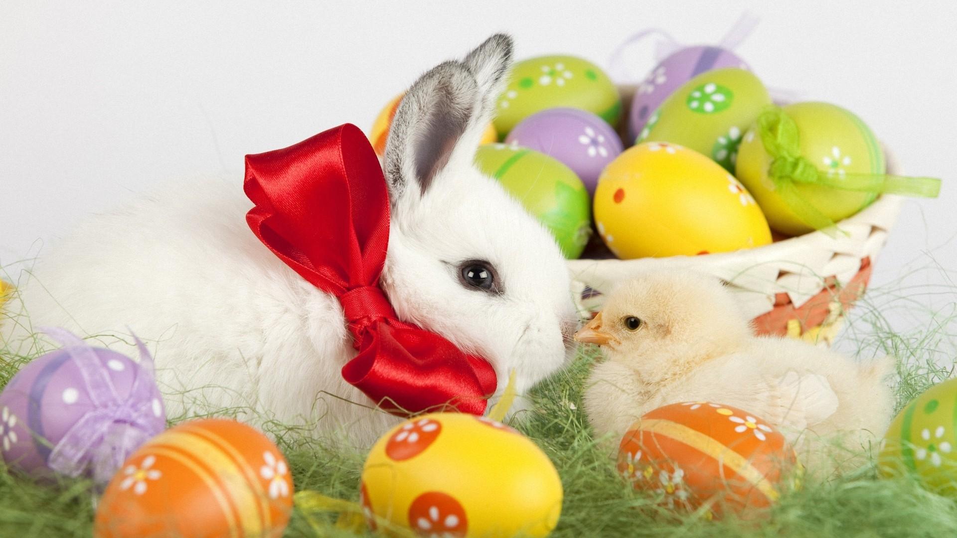 Cute Easter Wallpaper Download Full