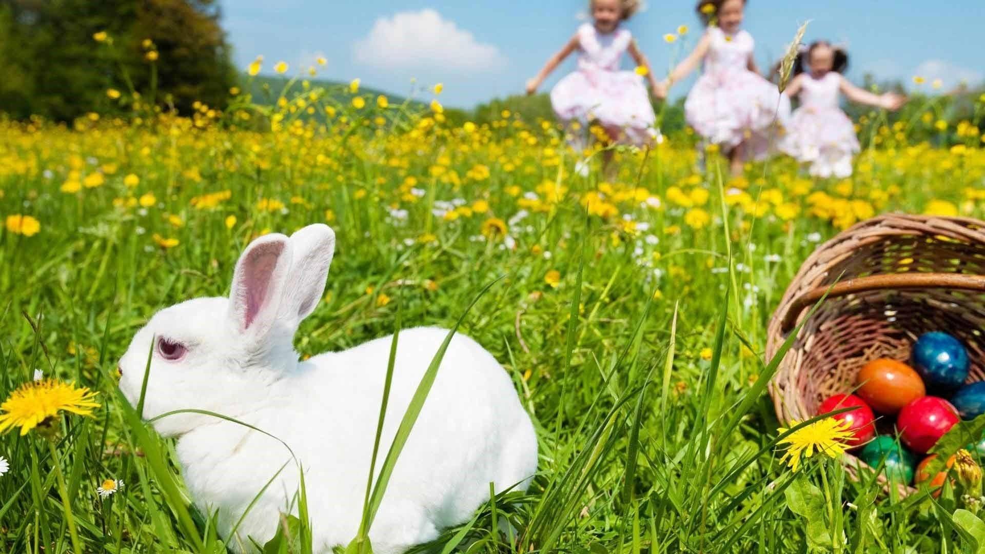 Cute Easter Wallpaper HD