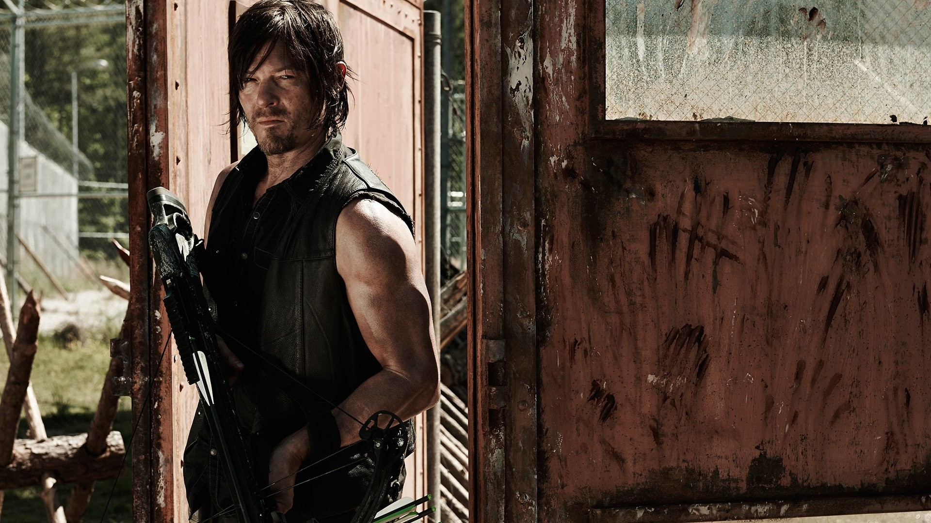 Daryl Dixon best Wallpaper