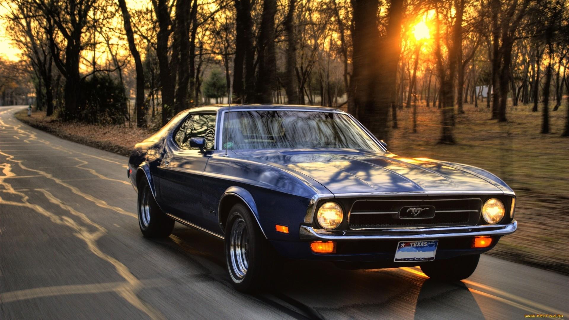 Mustang Wallpaper Pic