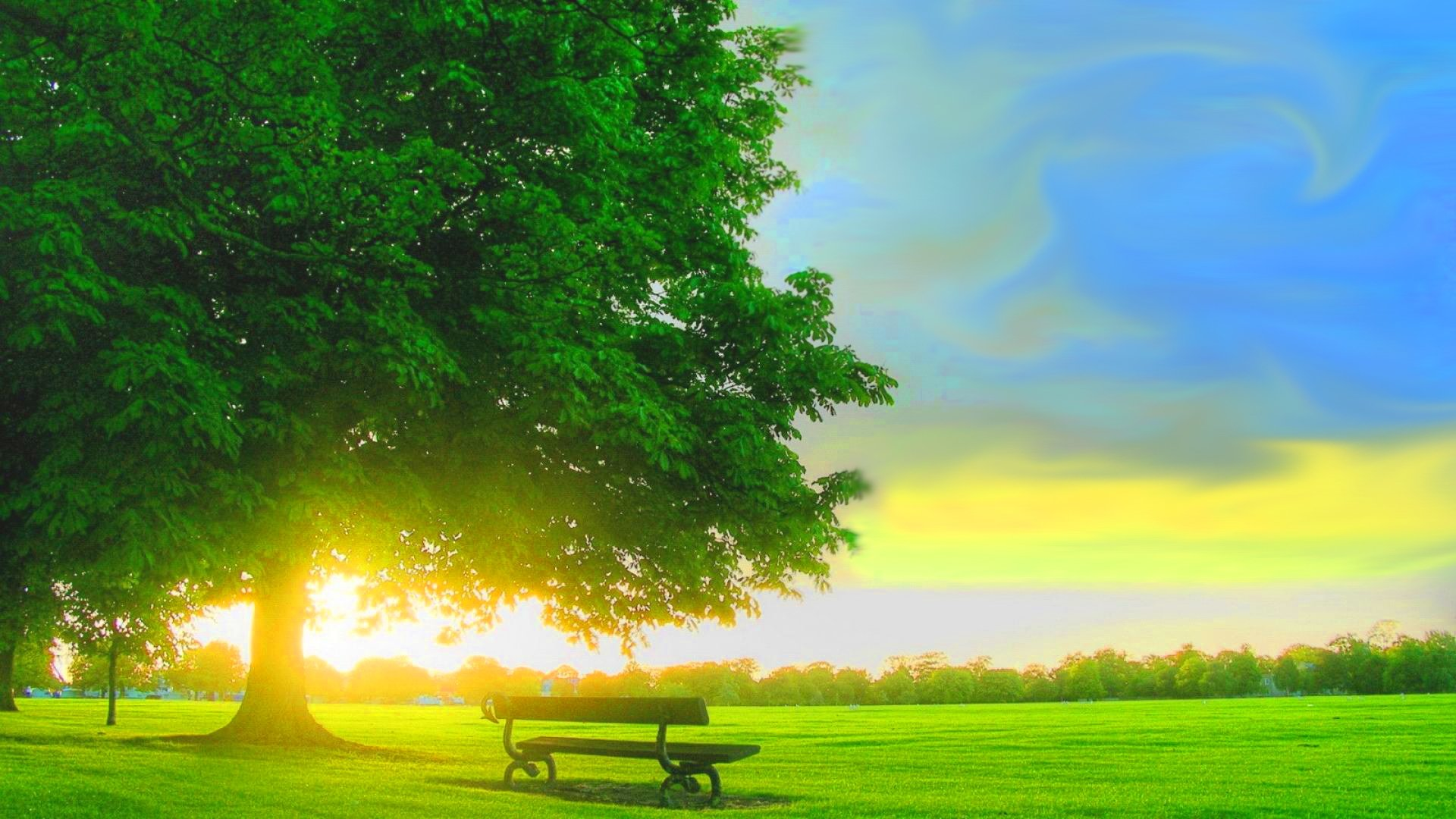 Positive Backgrounds HD