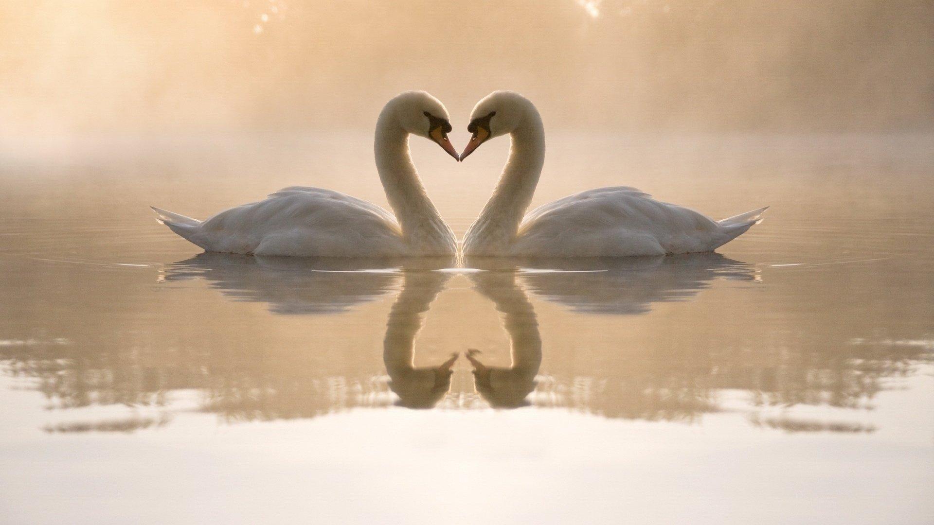 Romantic Love Wallpaper Pic