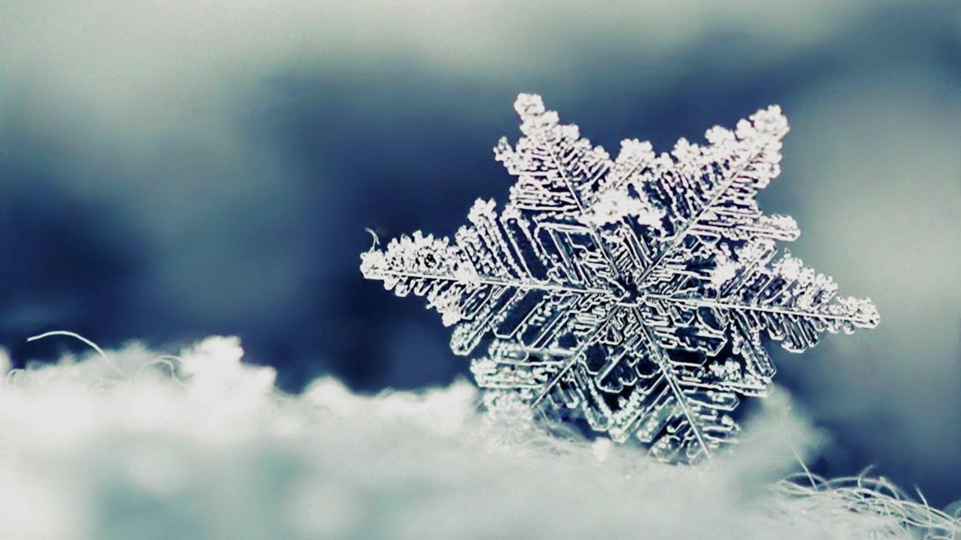 Snowflake Wallpaper Desktop