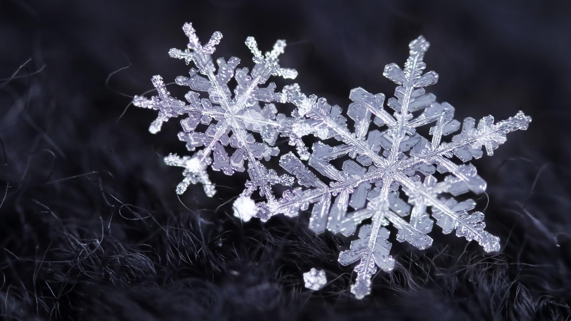 Snowflake Wallpaper Download Full