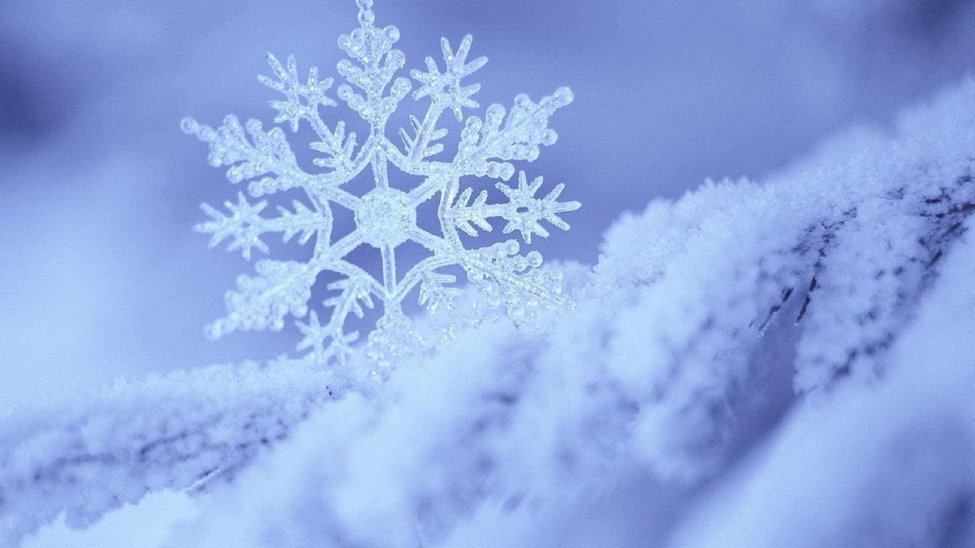 Snowflake Wallpaper Pic