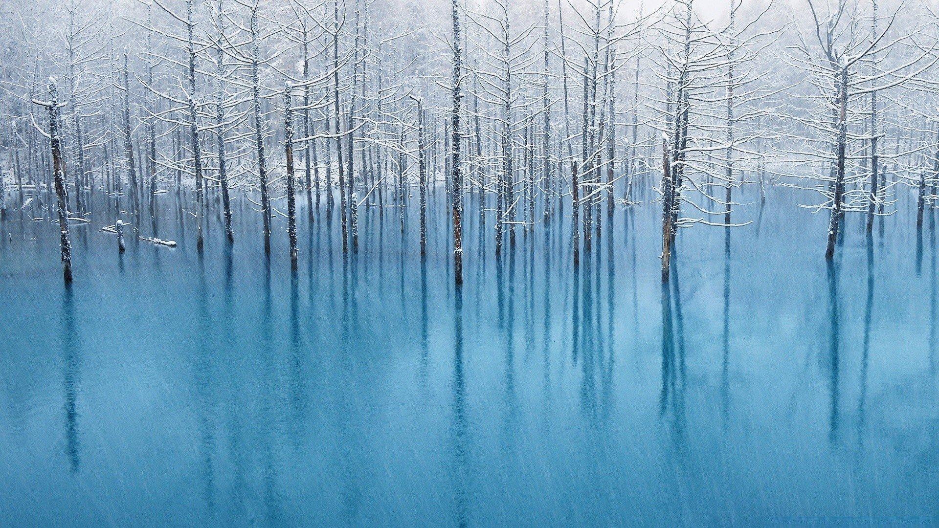 Winter Aesthetic Wallpaper For Pc