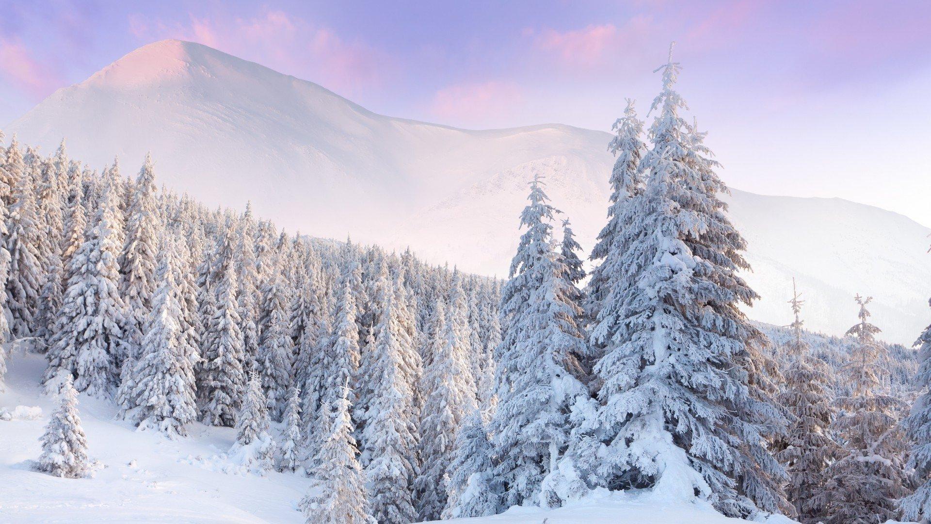 Winter Aesthetic Wallpaper Full HD