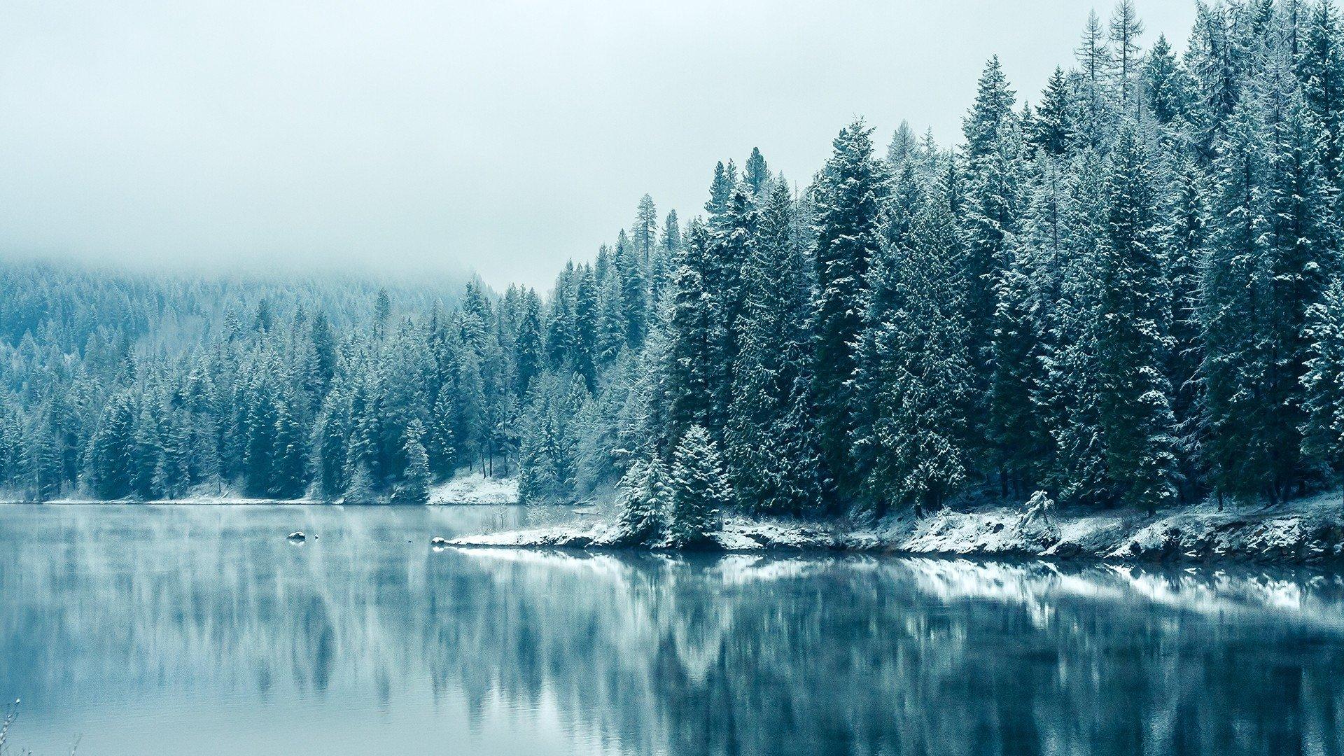Winter Aesthetic Wallpaper Image