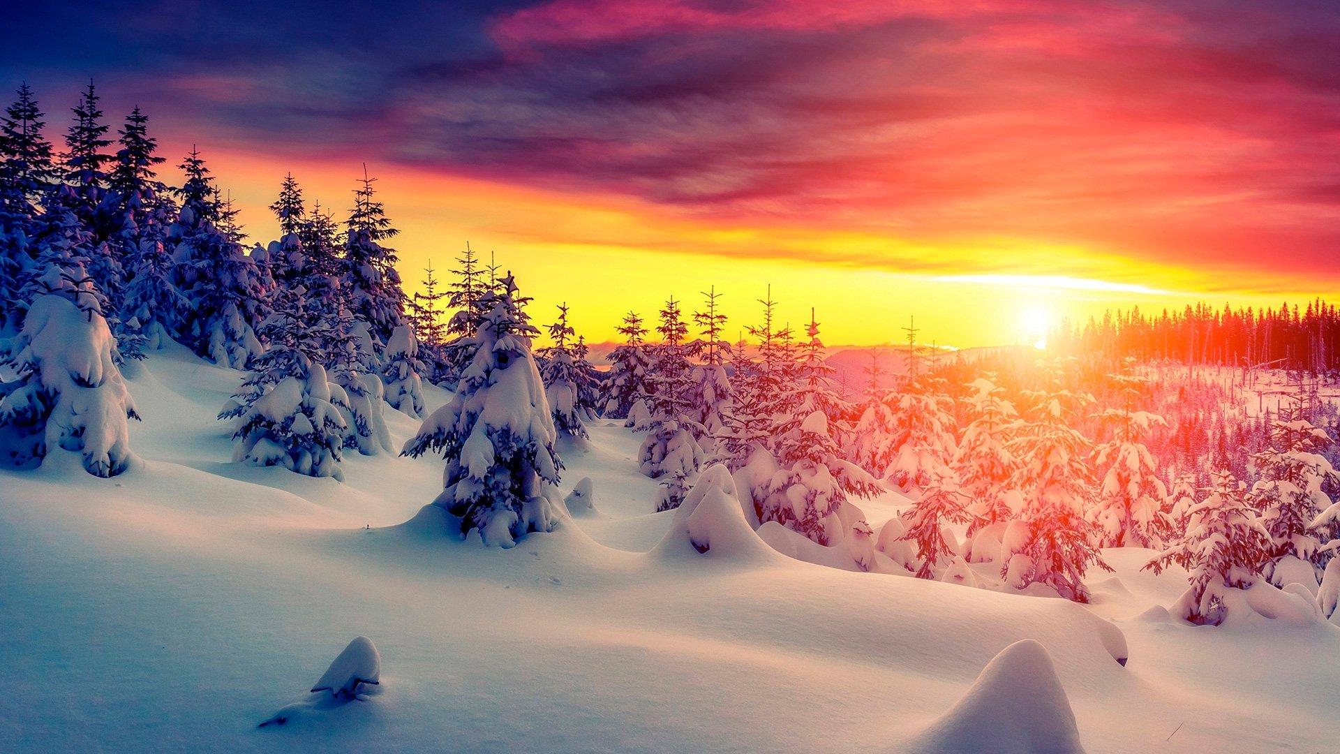 Winter Aesthetic Wallpaper Pic