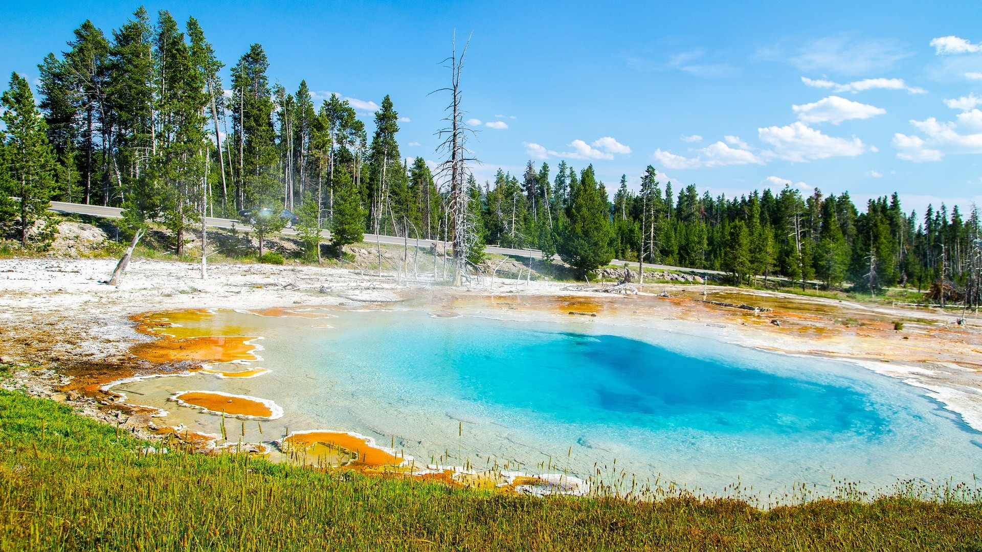 Yellowstone Wallpaper Free Download
