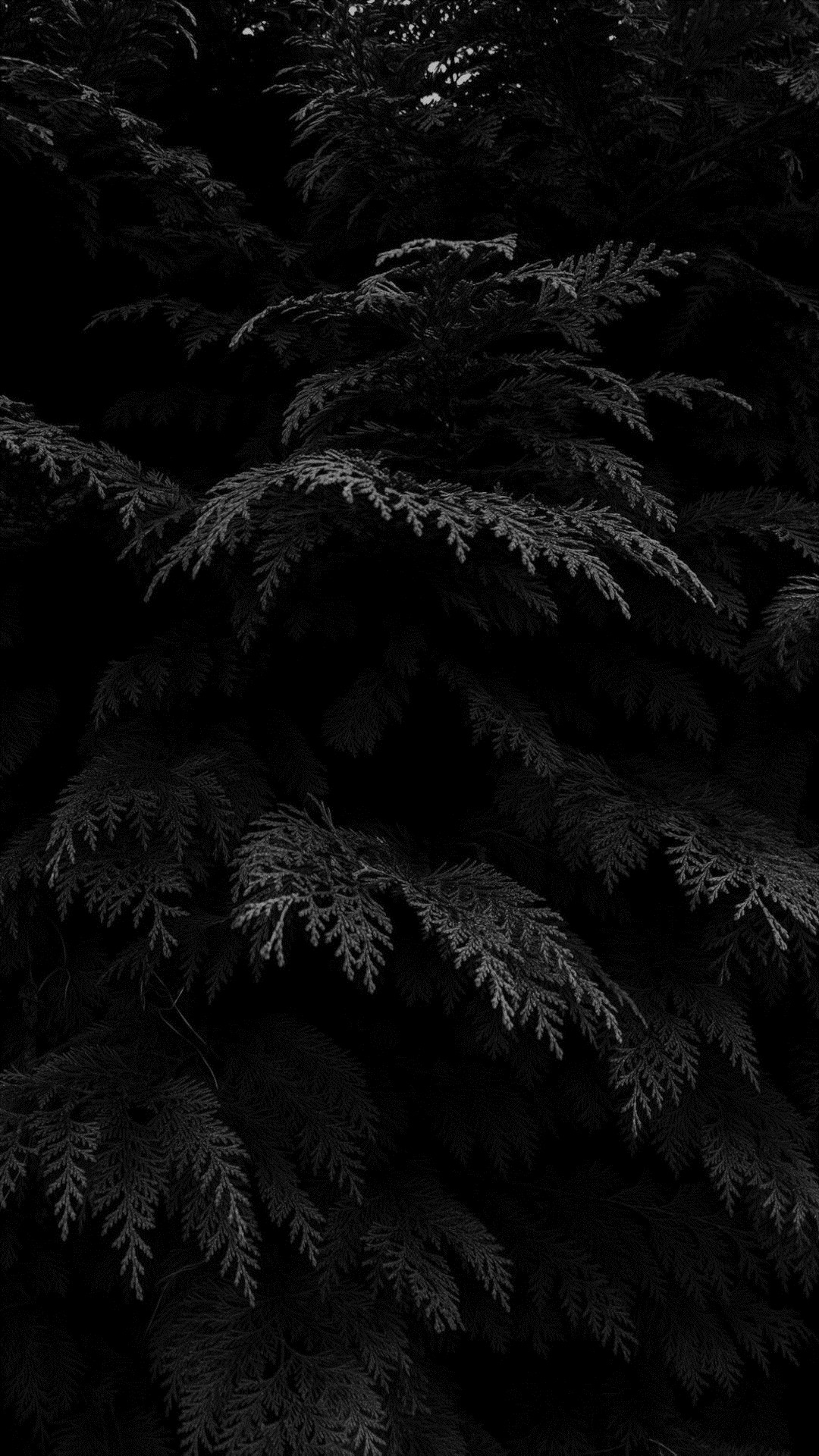 Dark iPhone 5 wallpaper