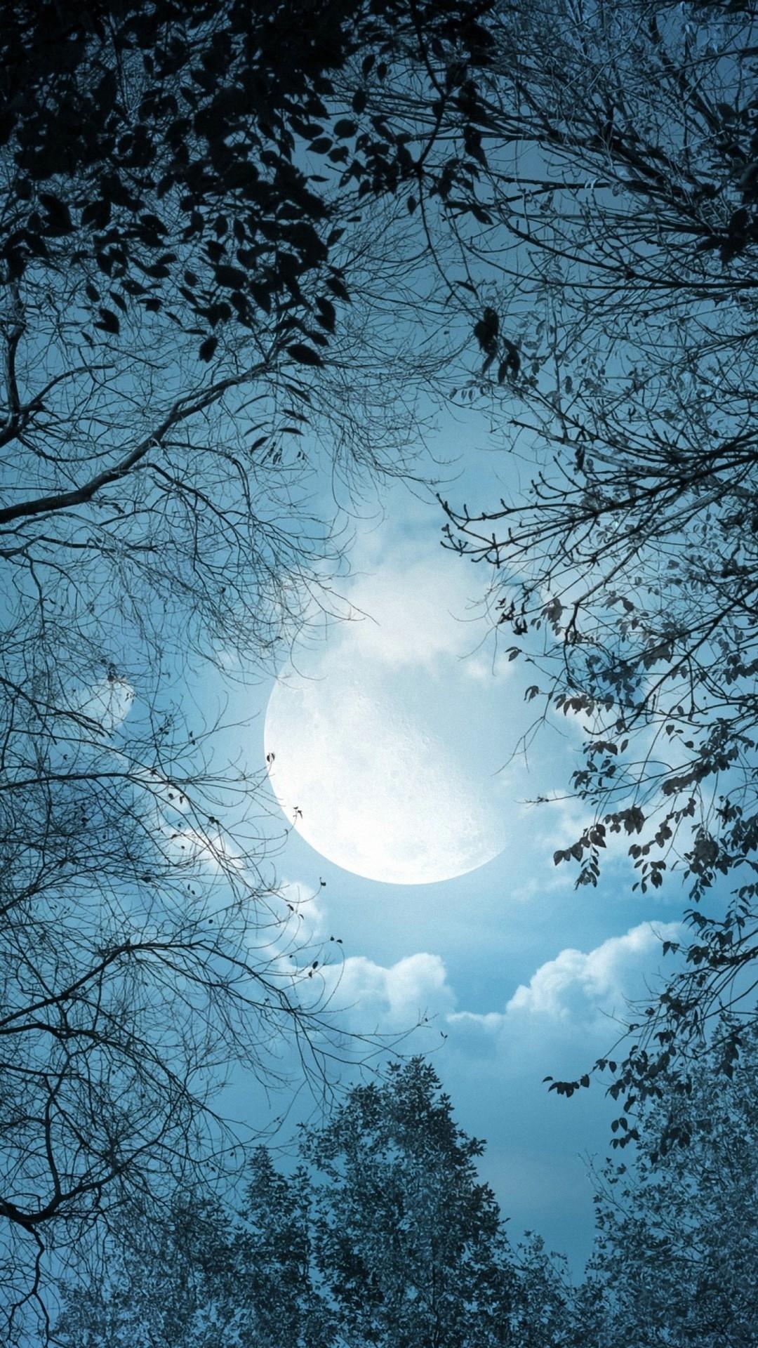 Moon phone background