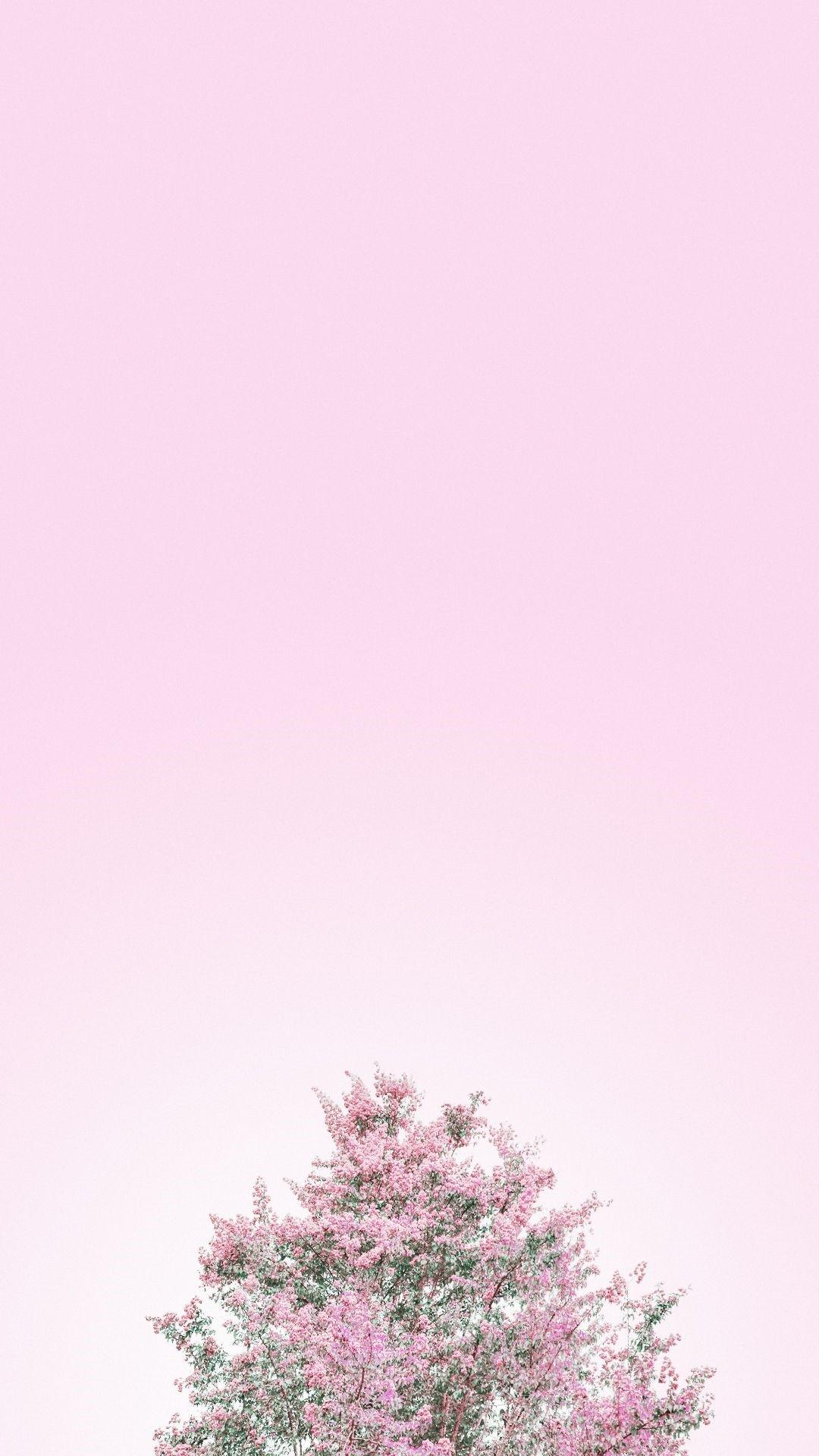 Pastel iPhone 5 wallpaper