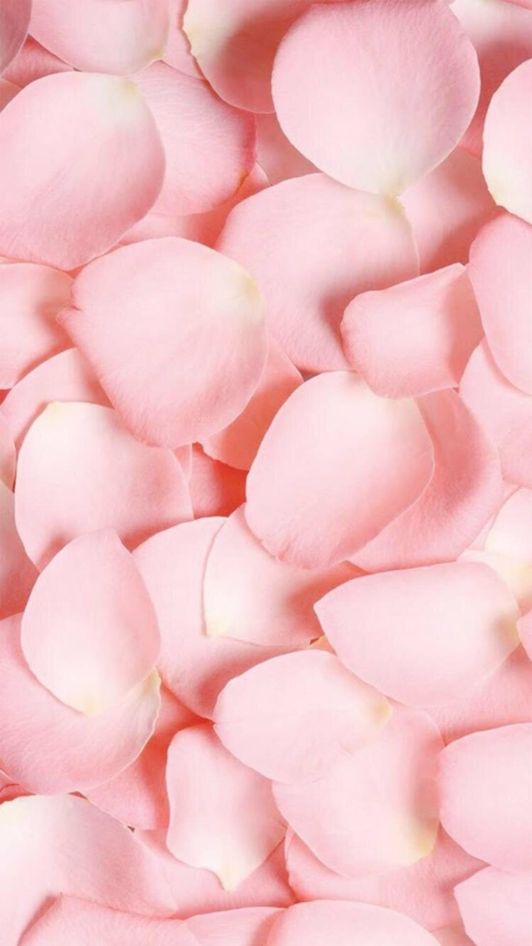 Pink iPhone 5 wallpaper