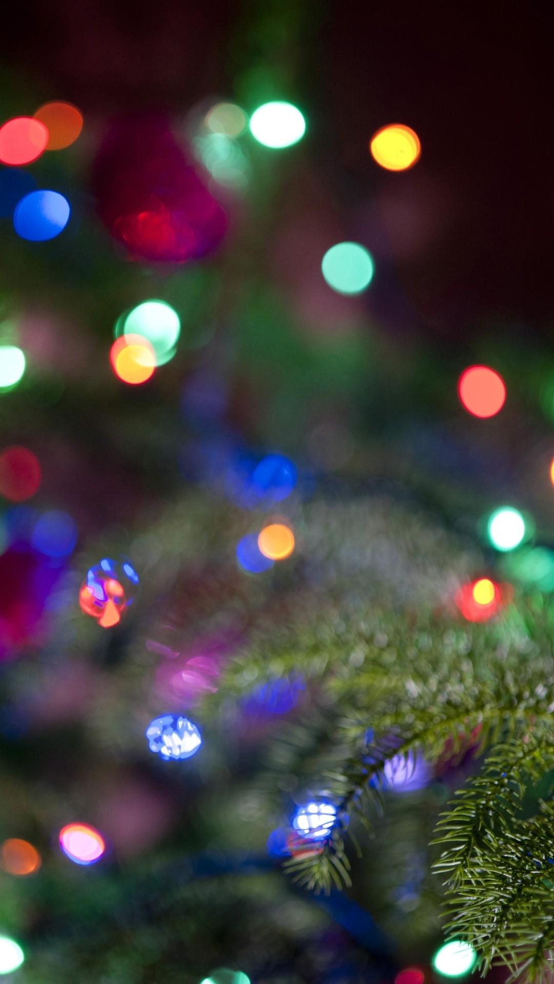 christmas lights 14