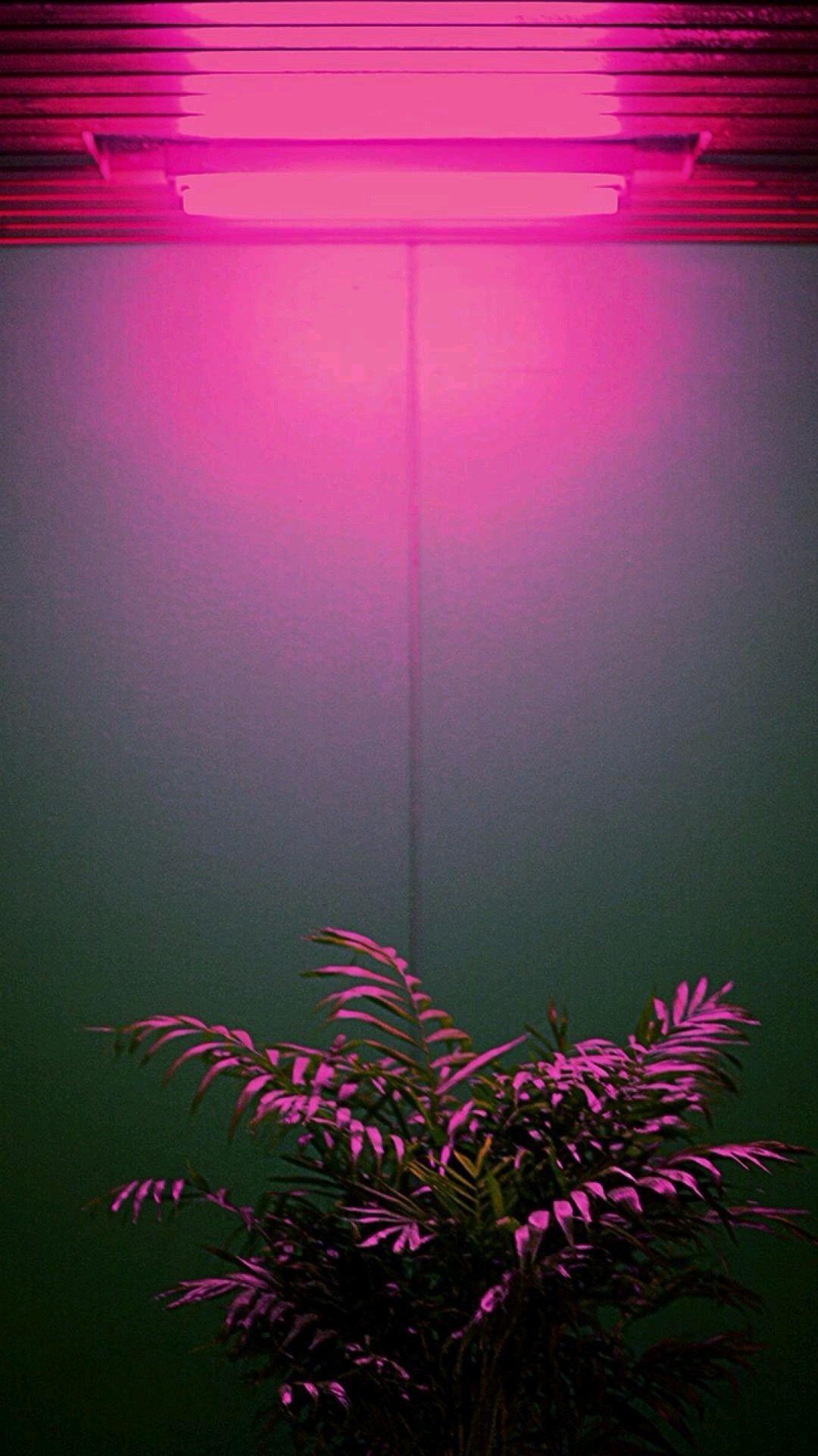 Light iPhone 5 wallpaper