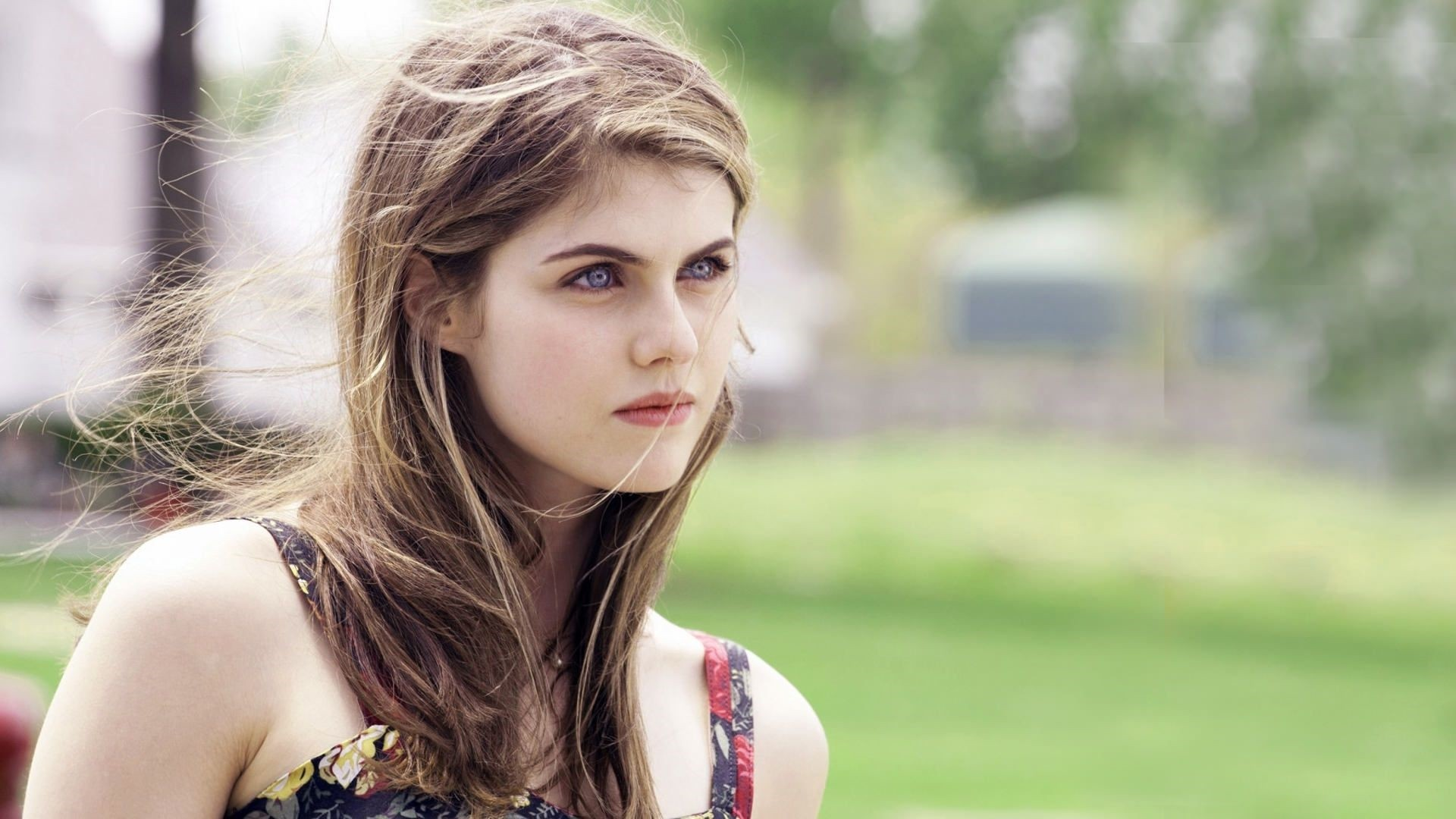 Alexandra Daddario Free Wallpaper and Background