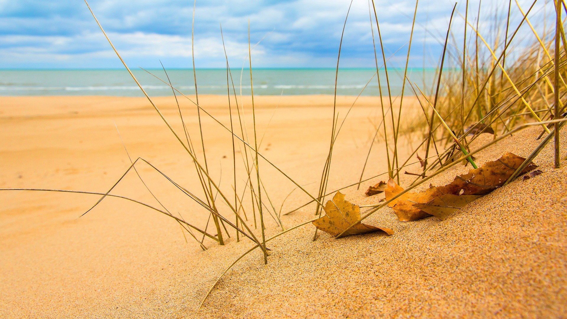 Sand Wallpaper Picture