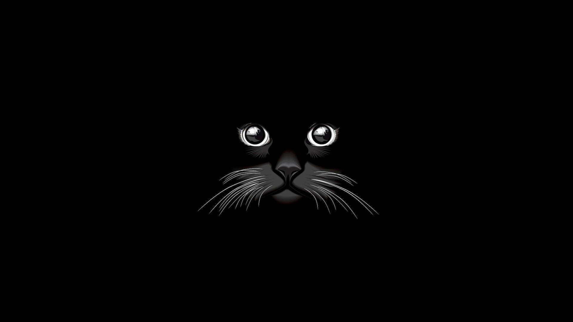 Cute Black HD Download