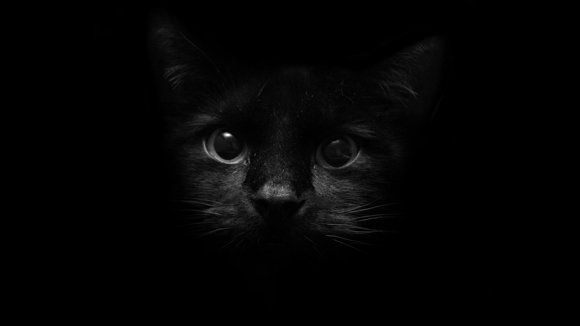 Cute Black PC Wallpaper HD