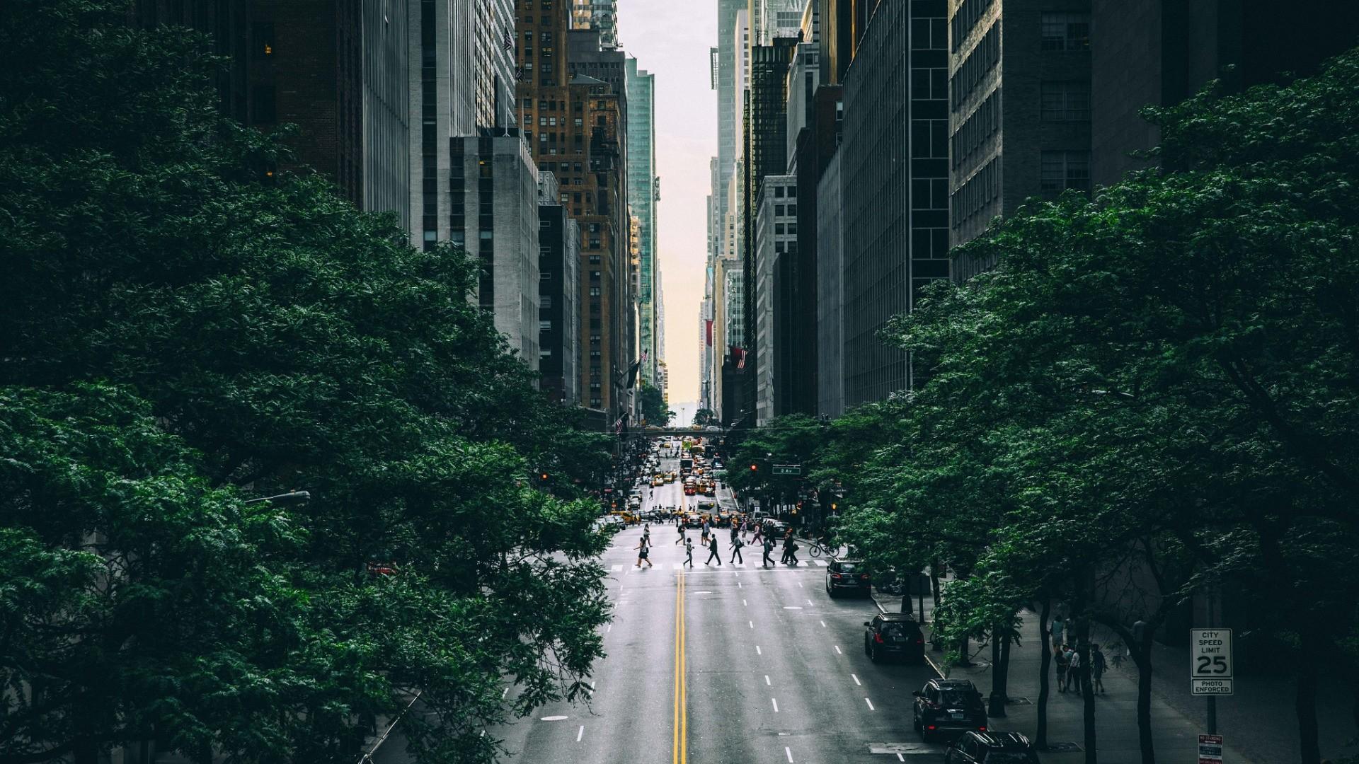 New York Street Background