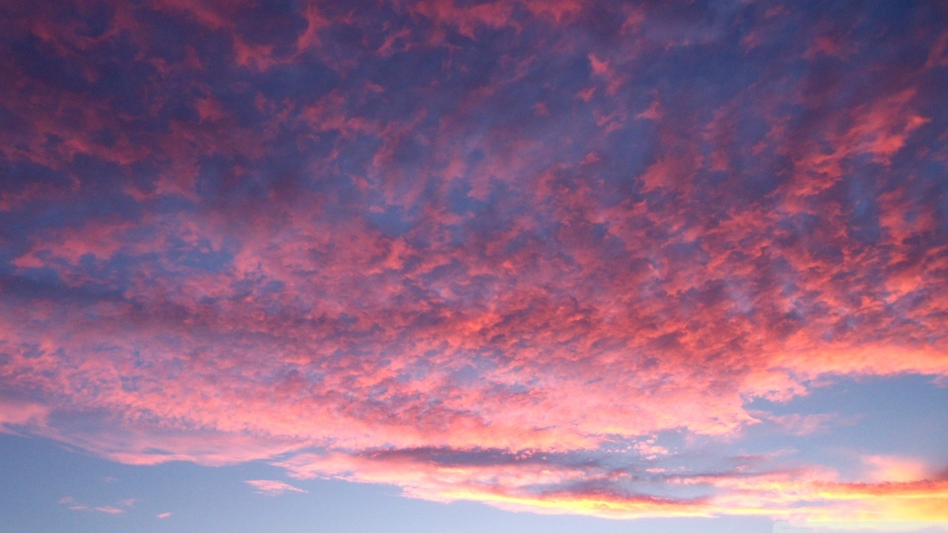 Pink Cloud wallpaper