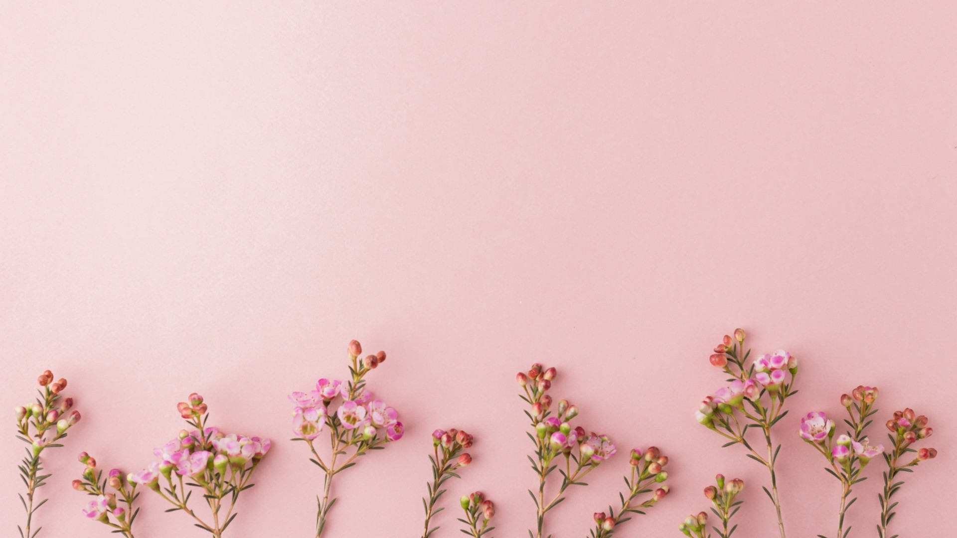 Rose Gold Cute Download Wallpaper