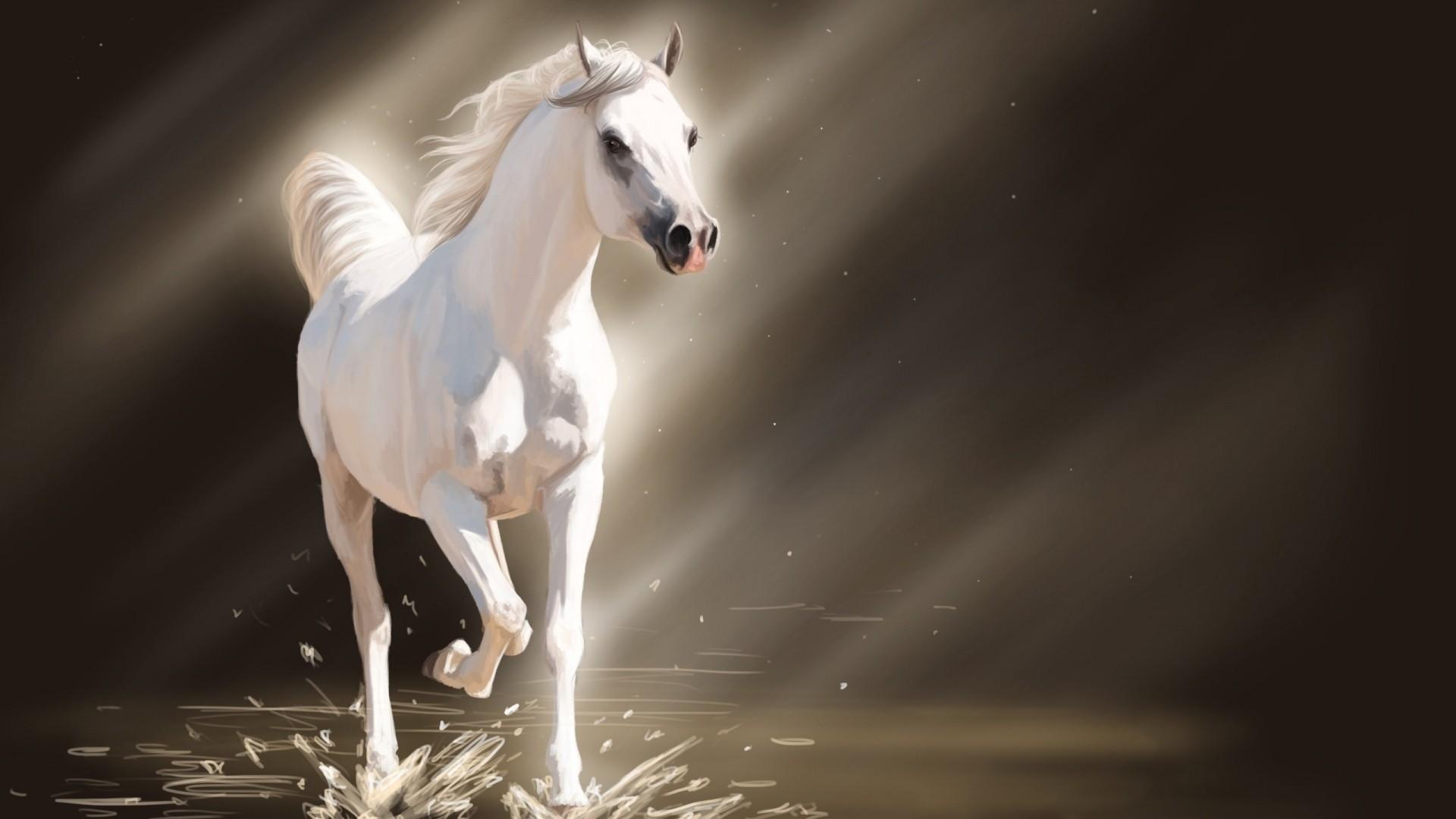 White Horse PC Wallpaper