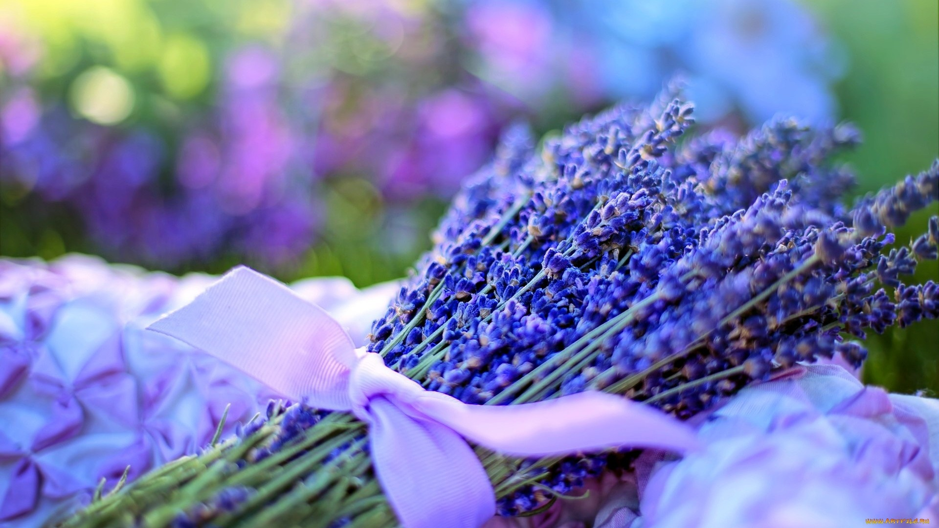 Lavender Free Wallpaper and Background