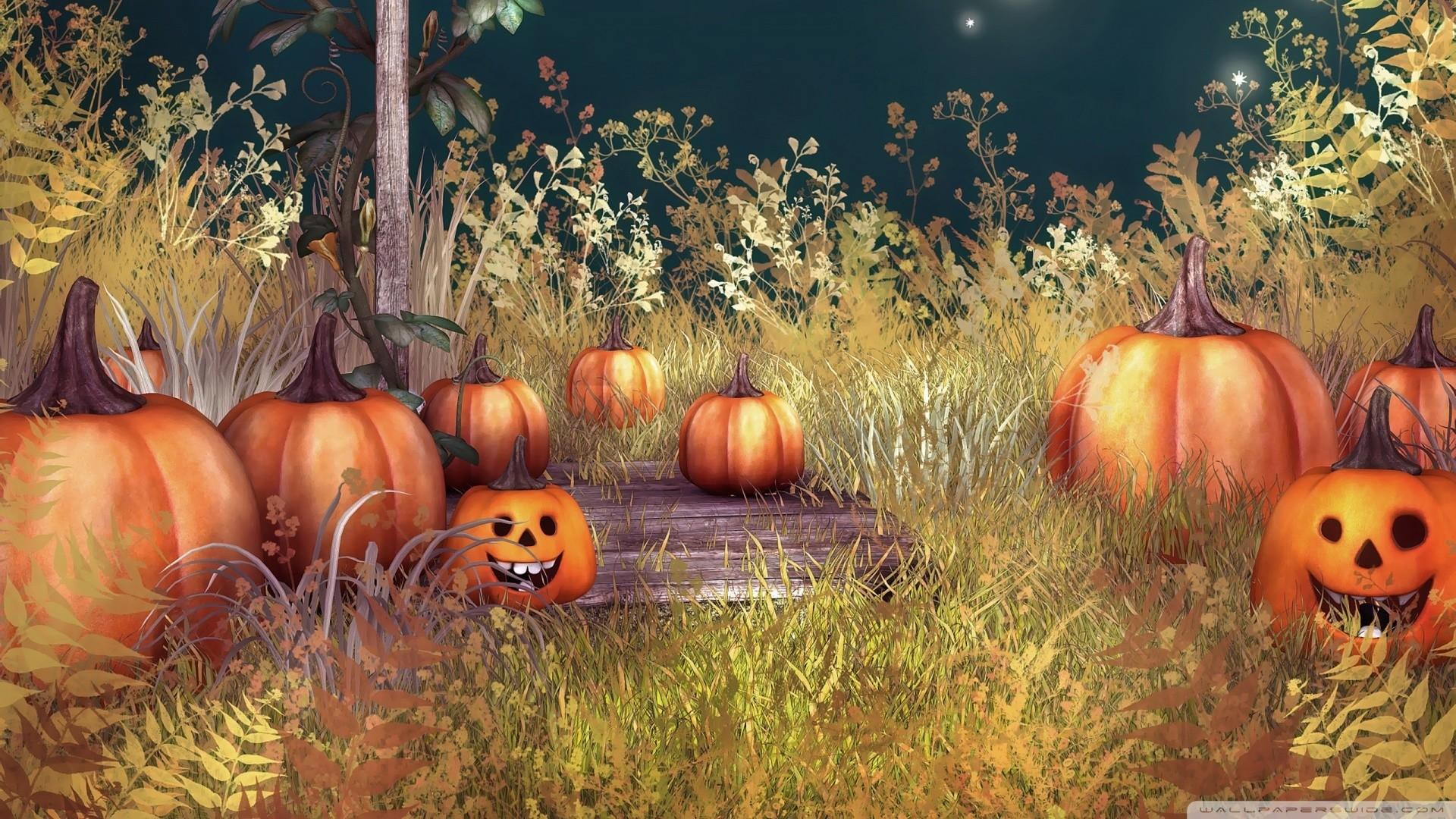 Pumpkin PC Wallpaper