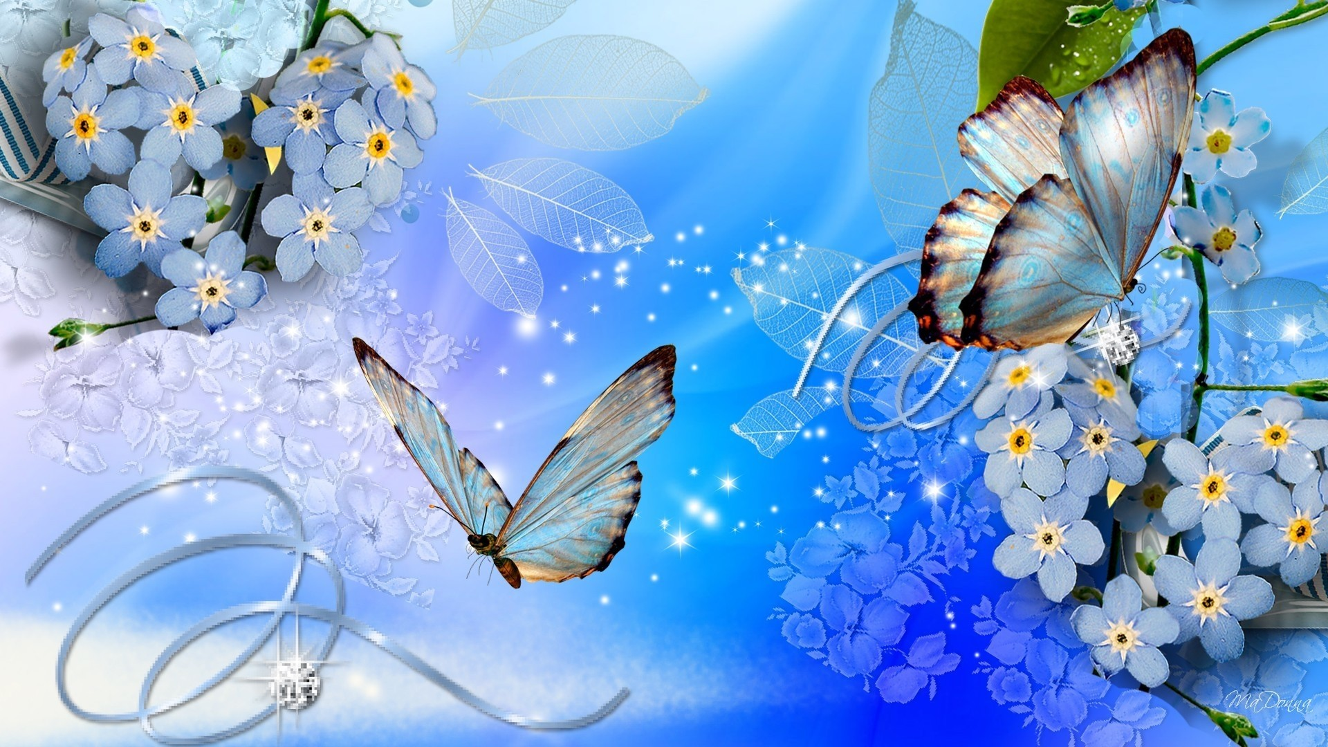 Blue Butterfly Desktop wallpaper